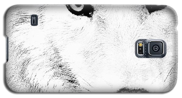 Shy Wolf Galaxy S5 Case