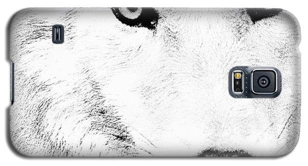 Shy Wolf Galaxy S5 Case