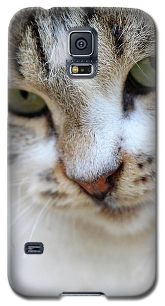 Galaxy S5 Case featuring the photograph Shyness by Munir Alawi