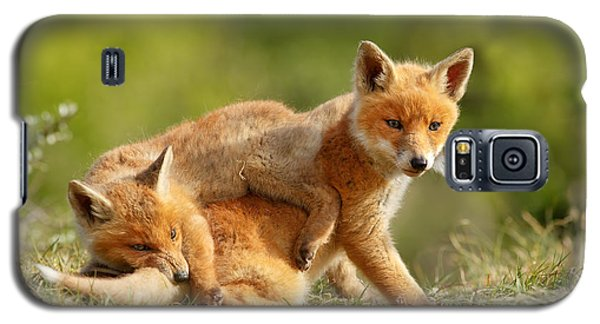 Sibbling Love - Playing Fox Cubs Galaxy S5 Case by Roeselien Raimond