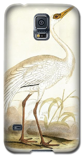 Siberian Crane Galaxy S5 Case by English School
