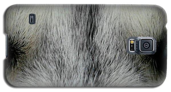 Siberian Eyes Galaxy S5 Case
