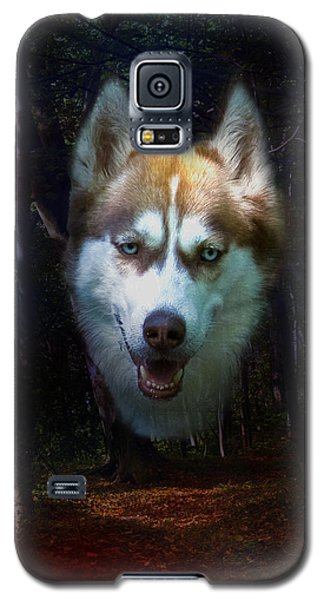 Siberian Husky Galaxy S5 Case