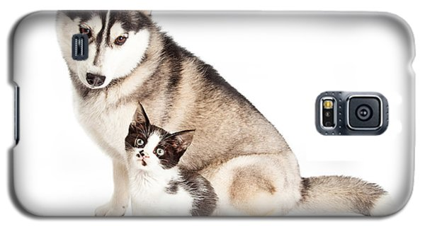 Siberian Husky Dog Sitting With Little Kitten Galaxy S5 Case