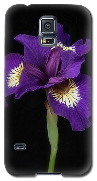 Siberian Iris Galaxy S5 Case