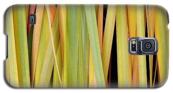 Siberian Iris In Winter Galaxy S5 Case