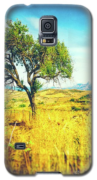 Galaxy S5 Case featuring the photograph Sicilian Landscape With Tree by Silvia Ganora