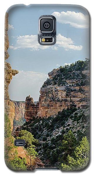 Side Canyon View Galaxy S5 Case