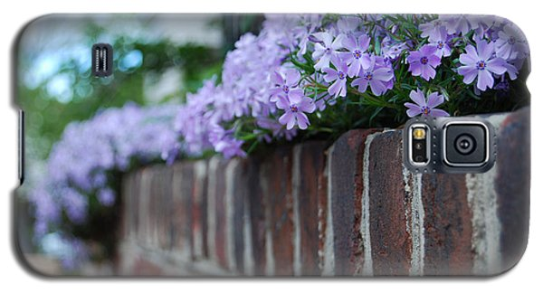 Galaxy S5 Case featuring the photograph Sidewalk Art by Linda Mesibov