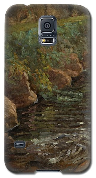 Sidie Hollow Galaxy S5 Case