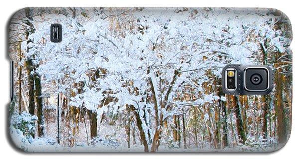 Siebold Viburnum In Snow Galaxy S5 Case