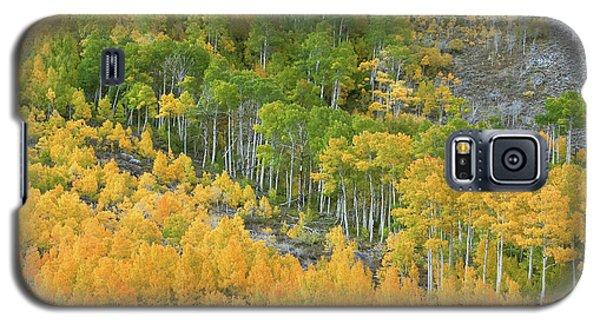 Galaxy S5 Case featuring the photograph Sierra Autumn Colors by Ram Vasudev