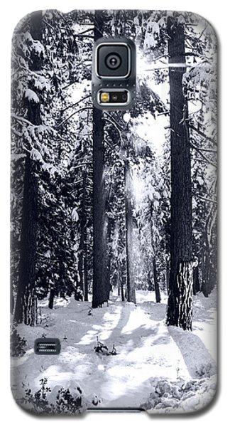 Galaxy S5 Case featuring the photograph Sierra Forest Show by William Havle