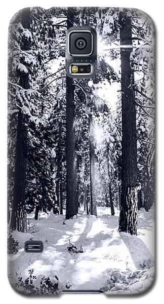 Sierra Forest Show Galaxy S5 Case