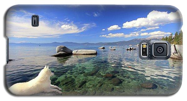 Sierra Sphinx Galaxy S5 Case
