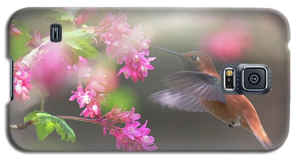 Sign Of Spring 2 Galaxy S5 Case by Randy Hall