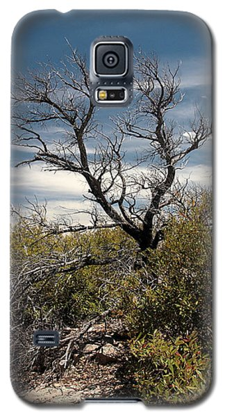 Galaxy S5 Case featuring the photograph Signs Of Life After The Fire by Joe Kozlowski
