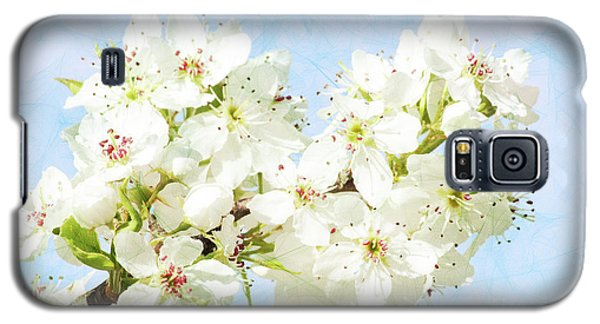 Signs Of Spring Galaxy S5 Case