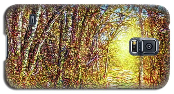 Silence Of A Forest Path Galaxy S5 Case by Joel Bruce Wallach