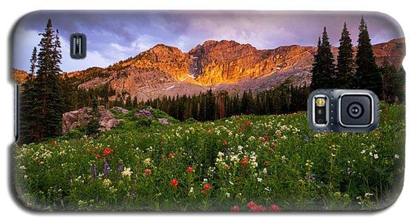 Silent Stirrings Galaxy S5 Case