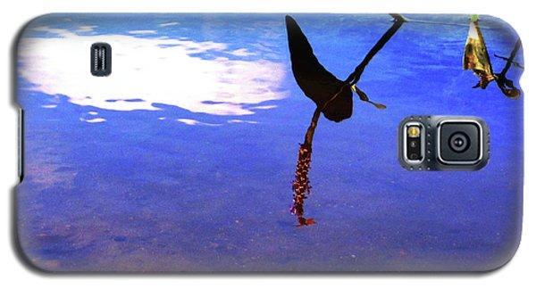 Silhouette Aquatic Fish Galaxy S5 Case