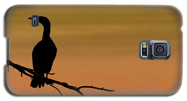 Silhouette Cormorant Galaxy S5 Case by Sebastian Musial