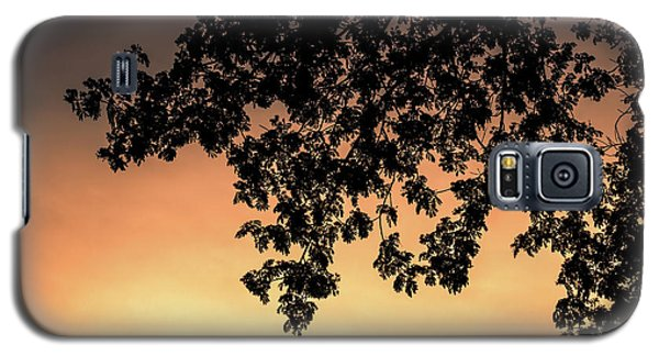Galaxy S5 Case featuring the photograph Silhouette Tree In The Dawn Sky by Jingjits Photography