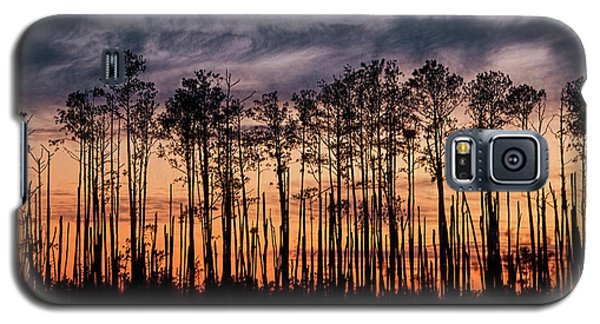 Silhouetted Sunset Galaxy S5 Case