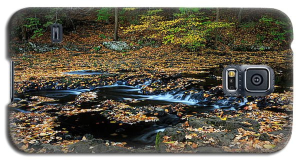 Silky New England Stream In Autum Galaxy S5 Case