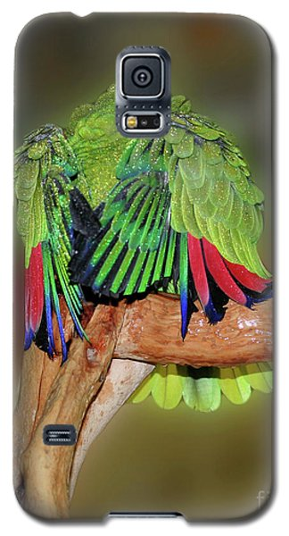Galaxy S5 Case featuring the photograph Silly Amazon Parrot by Smilin Eyes  Treasures