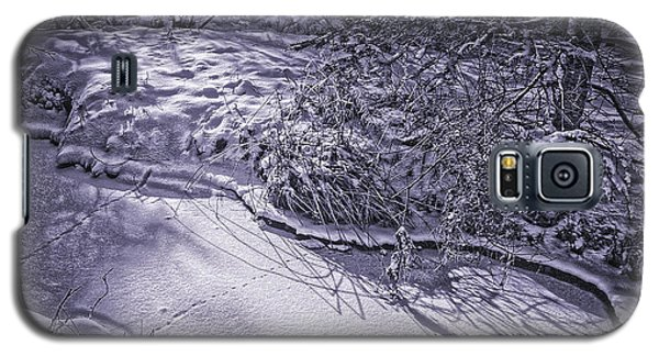 Silver Brook In Winter Galaxy S5 Case