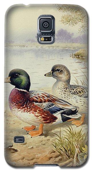 Silver Call Ducks Galaxy S5 Case