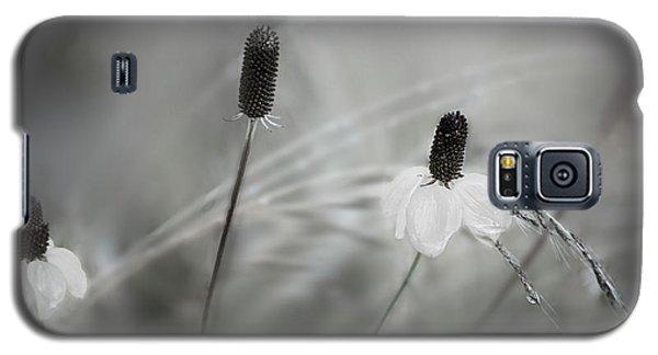 Silver Dew Galaxy S5 Case