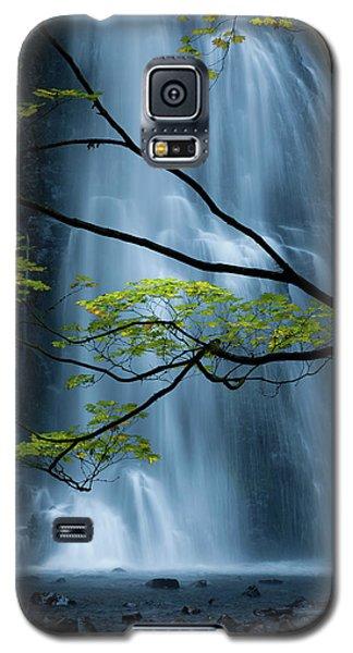 Silver Fall Galaxy S5 Case