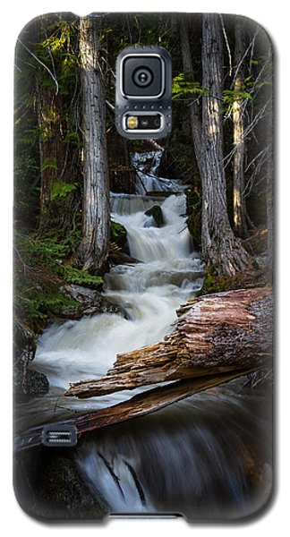 Silver Falls Galaxy S5 Case