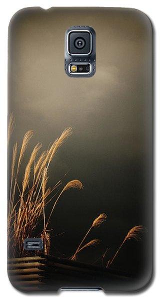 Silver Grass Galaxy S5 Case by Rachel Mirror
