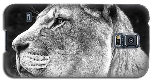 Silver Lioness  Galaxy S5 Case