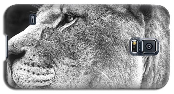 Silver Lioness - Squareformat Galaxy S5 Case