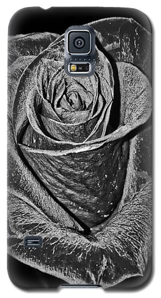 Silver Rose Galaxy S5 Case