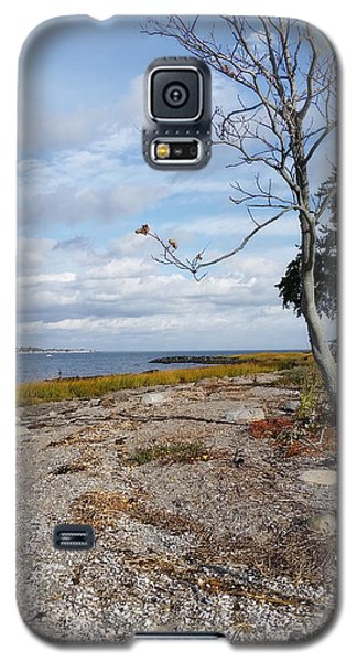 Galaxy S5 Case featuring the photograph Silver Sands by Raymond Earley