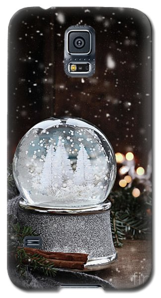 Galaxy S5 Case featuring the photograph Silver Snow Globe by Stephanie Frey