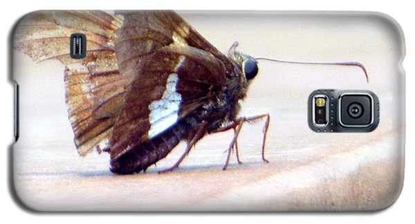 Galaxy S5 Case featuring the photograph Silver Spotted Skipper Butterfly by Rockin Docks Deluxephotos