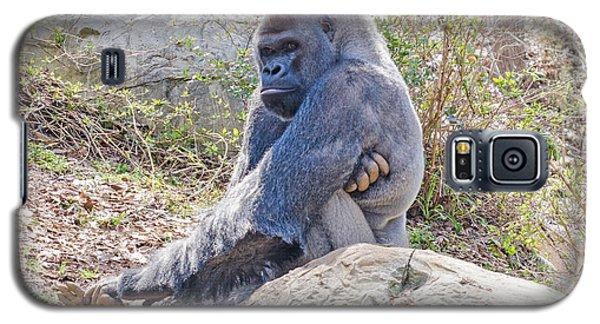Silverback Gorilla  Galaxy S5 Case