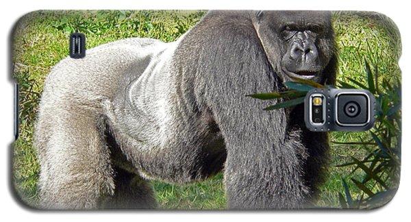 Silverback Galaxy S5 Case