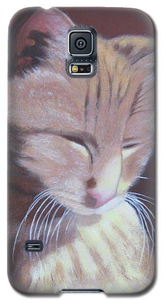 Simba, Best Cat. Galaxy S5 Case