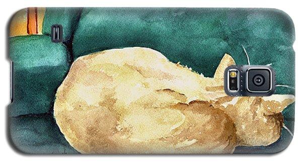 Simba Galaxy S5 Case