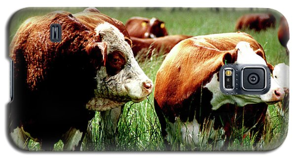 Galaxy S5 Case featuring the photograph Simmental Bull And Hereford Cow by Larry Campbell
