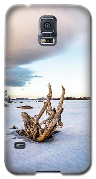 Simplicity No.4  Galaxy S5 Case