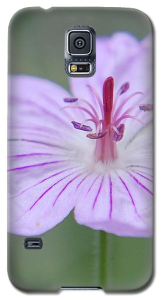 Simplicity Of A Flower Galaxy S5 Case