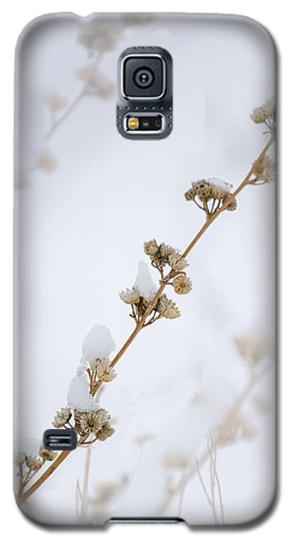 Simplicity Of Winter Galaxy S5 Case